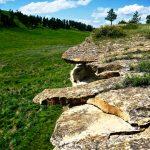 55. Rosebud Battlefield Buffalo Jump, Big Horn County, Montana, 2008.