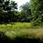46. Sappa Creek Massacre Site, Rawlins County, Kansas, 2010.