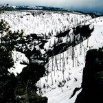 190. Yellowstone National Park, Wyoming, 2008.