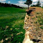 196. Buffalo Jump, Rosebud Battlefield, Montana, 2008.