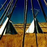 33. Lodge Poles, Fort Union, North Dakota, 1987.