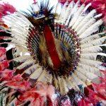 138. Crow Fair Bustle, Crow Agency, Montana, 2010.