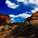 318. Canyon de Chelly, Chinle, Arizona, 2013.